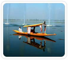 Shikara Boat Ride at Dal Lake